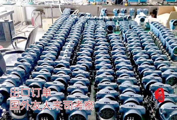 3051压力差压变送器外贸出口订单,客户现场考察