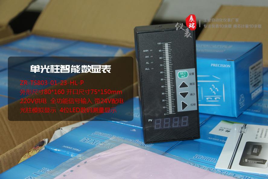 单光柱数字显示控制仪